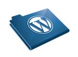 WordPress'te Veritabanı Performansını Artıralım