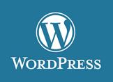 WordPress Yazı Şifreleme Nasıl Yapılır?
