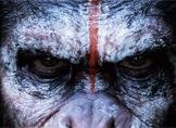 Yeni Maymunlar Cehennemi Filminde Rol Alma Şansı [Video]