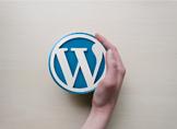 WordPresste Admin Paneli Rengi Nasıl Değiştirilir?