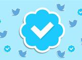 Twitter Hesap Onaylatma (Mavi Tik) Nasıl Yapılır?