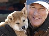 Tavsiye Film: Hachiko (Bir Köpeğin Hikâyesi)