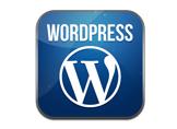WordPress'te Tema, Eklenti, Site Güncelleme Yetkilerini Kapatalım