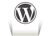 WordPress'te Açıklamalı Görsellerdeki Width Değerini Kaldıralım