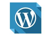 WordPress'te Yazı Tarihini Gösterme Nasıl Yapılır?