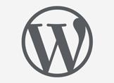 WordPress için Dinamik Copyright Tarihi Yazdırma Kodu