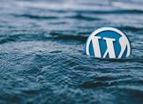 WordPress Toplu İçerik Düzenleme Nasıl Yapılır?