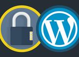 """WordPress """"wp-login.php"""" Şifreleme Nasıl Yapılır?"""