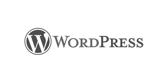 WordPress Klasik Editör - 2