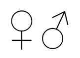 Klavyede Kadın İşareti Erkek İşareti