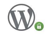 WordPress'te RSS Sayfalarındaki Sürüm Bilgilerini Kaldıralım