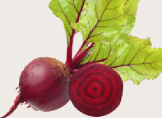 Hamilelikte (Gebelikte) Kırmızı Pancar Yemek