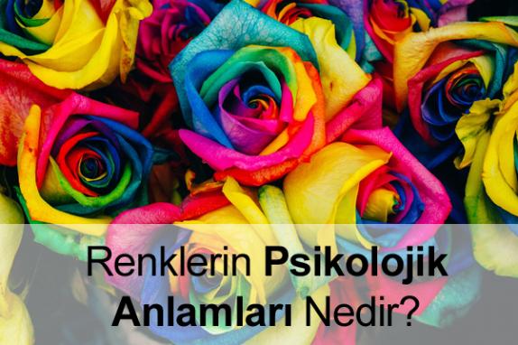 Renklerin Psikolojik Anlamları Nelerdir?