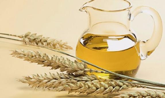 Buğday Yağının Cilde Faydaları ve Kullanımı
