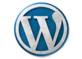 WordPress Yazılardaki Düzenleyen Bilgilerini Temizleyelim