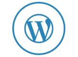 WordPress Dahili Veritabanı Onarımı Nasıl Yapılır?