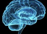 Beyin Mucizesi