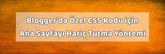 Blogger'da Özel CSS Kodu için Ana Sayfayı Hariç Tutma Yöntemi
